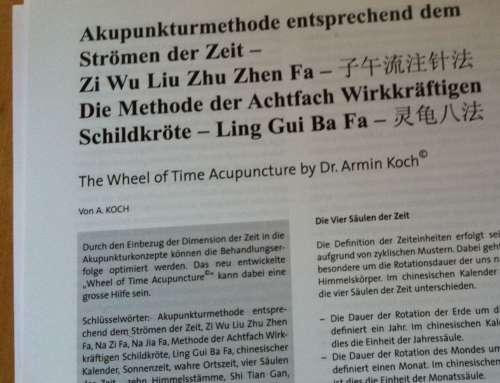 Akupunkturmethode entsprechend dem Strömen der Zeit und Methode der Achtfach Wirkkräftigen Schildkröte