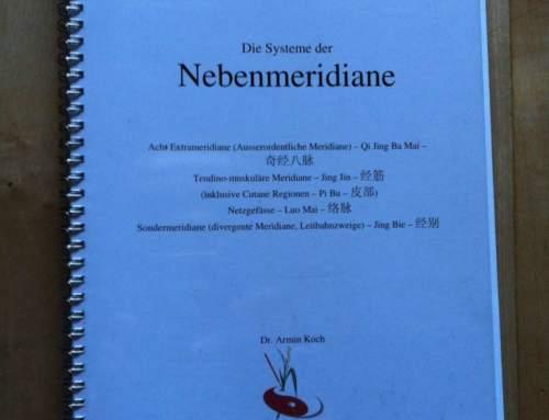 Die Systeme der Nebenmeridiane